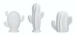 cactus bloomingville blanc