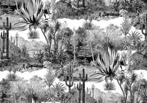 Papier-peint-fresque-du-desert-de-cactus