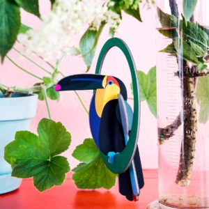 Carte Swinging Toucan