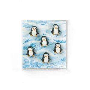 Boîte de 6 aimants PINGOUINS