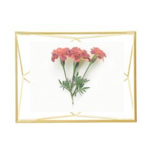 Cadre photo 10×15 PRISMA Doré mat