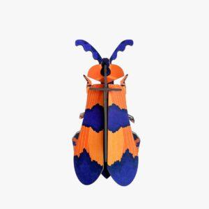 Petit insecte Décor mural WINGED BEETLE